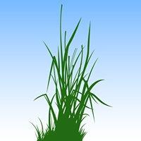 Grass Analytics