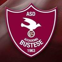 ASD Accademia Bustese Calcio