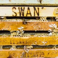Swan's Honey