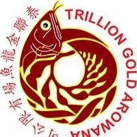 Trillion Gold Arowana Farm Sdn. Bhd