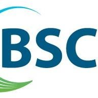 BSC Cleaning Services