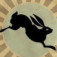 BLACK Rabbit Studio