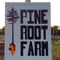 Pine Root Farm & Market