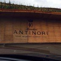 Cantine Antinori