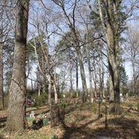 Historic Old Raleigh Cemetery 1835 - 2016