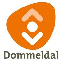 Bibliotheek Dommeldal