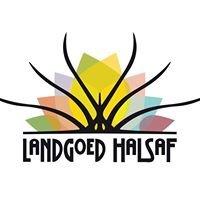 Landgoed Halsaf