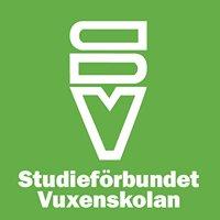 Studieförbundet Vuxenskolan Umeå
