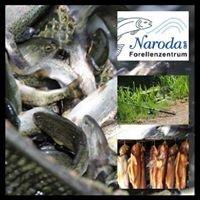 Forellenzentrum Naroda