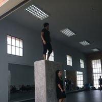 DanzAbierta