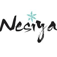 The Nesiya Institute