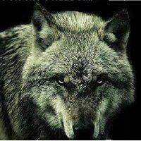 Wolfwork Custom Woodcrafting LLC