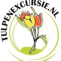 Tulpenexcursie / Tulip excursion