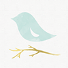 BirdsDream Design