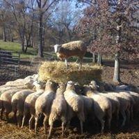 Hope Springs Farm