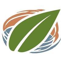 Green Skills Inc