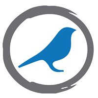 Bluebird Weddings & Events  www.bluebirdwe.com