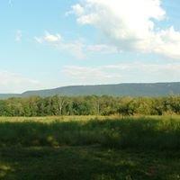 Merryfield's Farm