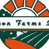 Olson Farms Inc