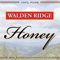 Walden Ridge Honey