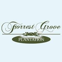 Forrest Grove Plantation