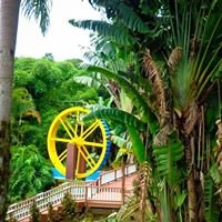 Jayuya Hacienda Gripiñas