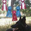 Possum Hollow Farm Trainer Erin Ledbetter