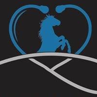 Palmetto Equine Veterinary Services