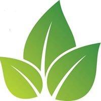 Lynnville-Sully Community Education Foundation