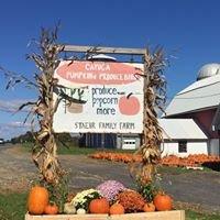 Cayuga Pumpkin Barn