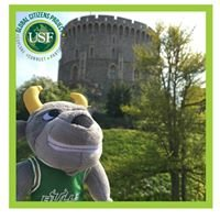 USF Global Citizens Project