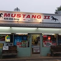 Mustang II Forest  City