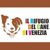 Il Rifugio del cane di Venezia