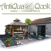 Antiqua & Qook Bed & Breakfast. Tongeren - Belgium