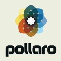 PollaroMedia