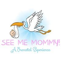 See Me Mommy: A Prenatal Experience