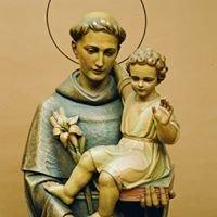 Sant'Antonio di Padova - I frati della Basilica