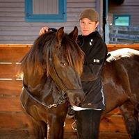 Jason Brickner Gaited Horsemanship