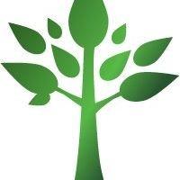 Eco Treecare