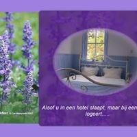 Bed&Breakfast Drenthe