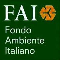 FAI Giovani - Palermo