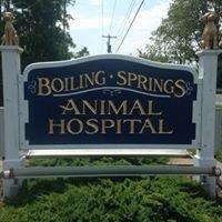 Boiling Springs Animal Hospital