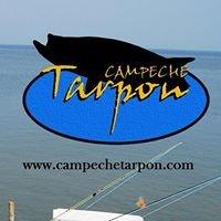 Campeche Tarpon