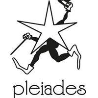 Pleiades cooperativa sociale onlus