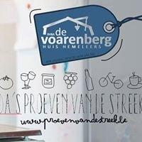 De Voarenberg