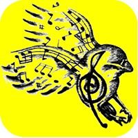 Freebird Sessions