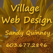 Village Web Design