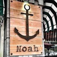 Noah Rotterdam