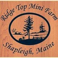 Ridge Top Mini Farm