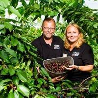 Fruitbedrijf Hoekstra